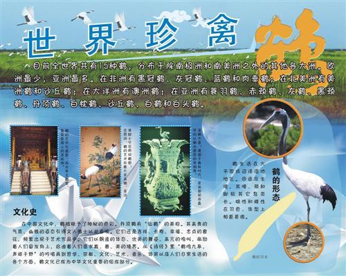 [园区项目]成都动物园鹤年活动展板